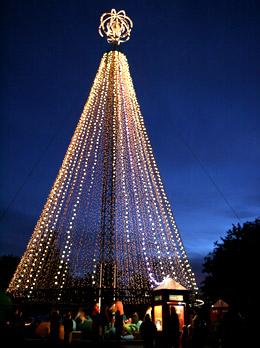 2011年のクライストチャーチクリスマスツリー