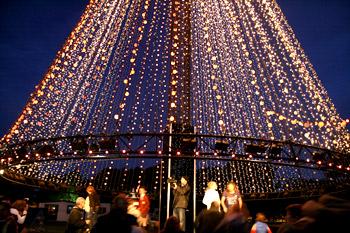 ハグレーパークのクリスマスツリー