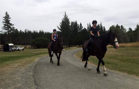 ニュージーランドで乗馬
