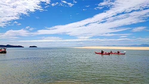 潮干狩り ニュージーランド