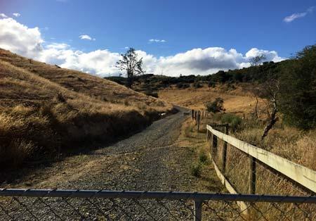 ニュージーランド郊外の家