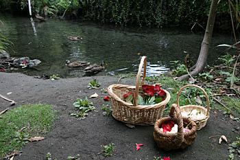 リカトンハウスでは、エイボン川に花を流してた