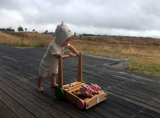 ニュージーランド 田舎暮らし