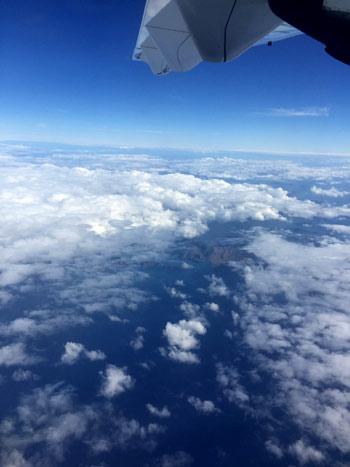 タウランガ 飛行機