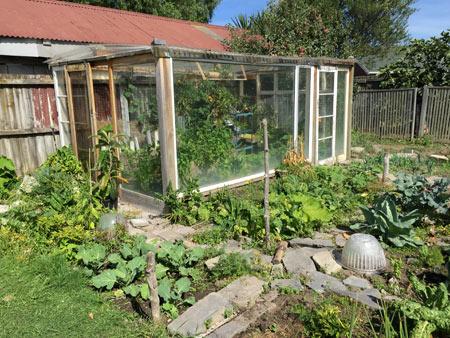 野菜 ニュージーランド