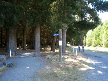 bottle lake forest