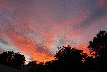ニュージーランドの朝焼け